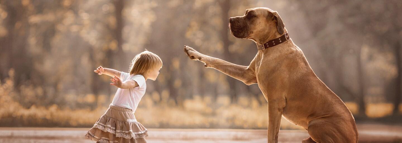 Veľké psy ako najlepší kamaráti malých detí. Fotograf sa ich puto rozhodol zväčšiť na krásnych záberoch