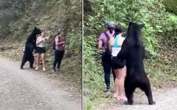 VIDEO: Medvěd se v Mexiku postavil vedle turistky na zadní. Chtěl si udělat selfie
