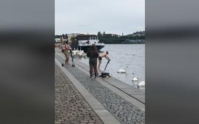 VIDEO: Mladíci v Praze sjížděli s elektrickými koloběžkami do Vltavy. Zřejmě budou platit vysokou finanční náhradu