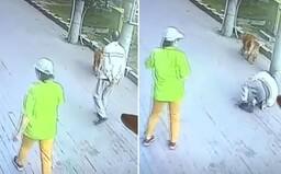 Video: Mužovi padla na hlavu mačka. V nemocnici strávil 23 dní