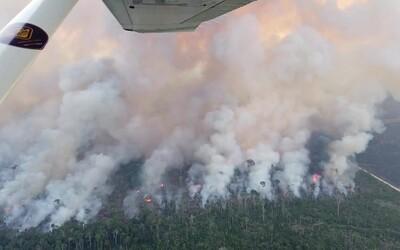 Video rozsáhlých požárů v Brazílii vyděsilo i odborníky. Požáry a odlesňování by mohly skončit katastrofou