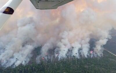 Video rozsiahlych požiarov v Brazílii vydesilo ľudí aj odborníkov. Požiare a odlesňovanie by mohli vyústiť do katastrofy