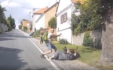 VIDEO: Staford se na Plzeňsku vrhl na ženu se psem v náručí. Pomohla až střelba