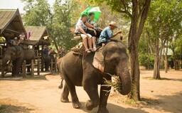 Vietnam zakázal jízdu na slonech