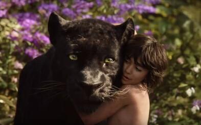 Virtuálna realita ako budúcnosť kinematografie alebo Kniha džunglí Mowgliho očami