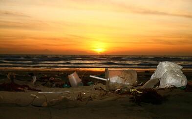 Vláda schválila zákaz jednorázových plastových příborů, talířů a brček