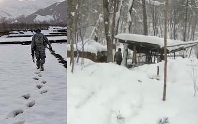 Voják nezvěstný od roku 2004 se našel živý v lese na Kamčatce. Označili ho za mrtvého, pohřbili, ale on pouze dezertoval