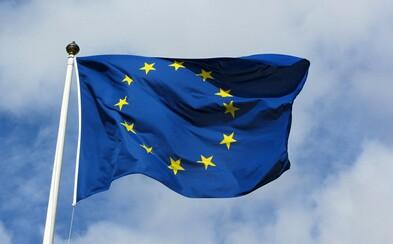 Volby do Evropského parlamentu vyhrálo ANO, Piráti jsou třetí. Jeden mandát získali i komunisté