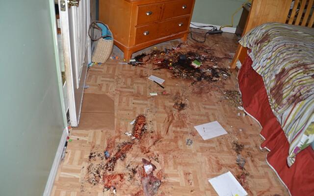 Vrah v priamom prenose zistil, že polícia našla telo jeho obete. Tieto na prvý pohľad nevinné videá skrývajú aj brutálne vraždy
