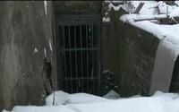 Vrahovia z Martina sa zavraždeným telom pochválili kamarátom. Ukázali im ho v katakombách a zahladili stopy