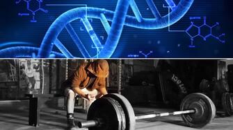 Všetko, čo vieme o genetike a jej vplyve na cvičenie a telo