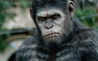 Vyhraj tričká k filmu Úsvit planéty opíc