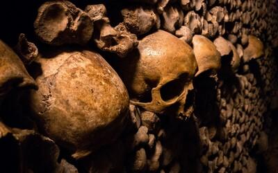"""Vyhynutá """"populácia duchov"""" je zrejme predkom dnešných západných Afričanov"""