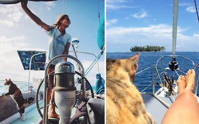 Vykašlala se na práci a vydala se na plavbu po celém světě. Liz dělá společnost roztomilá kočka a nekonečné moře