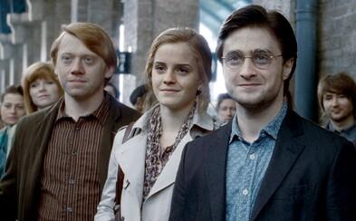 Vyrostla na něm celá generace. Komu patří české a slovenské hlasy herců z Harryho Pottera?