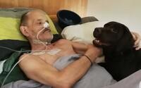 Vysadil léky, přestal jíst a své poslední chvíle streamuje živě. Smrtelně nemocnému Francouzovi odepřeli možnost na eutanazii