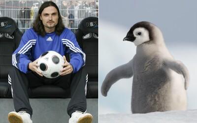 Vystřídal 25 klubů, třikrát ho prohlásili za mrtvého a ukradl tučňáka, to je Lutz Pfannenstiel