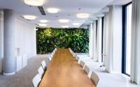 Využívajú ich hotely, nemocnice aj kancelárie. Pozri sa, ako sa dajú využiť umelé rastliny