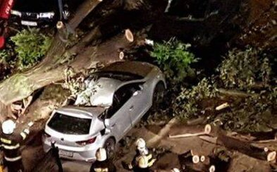 Vyvrátené stromy či zničené domy a autá. Západným Slovenskom sa v noci prehnala silná búrka