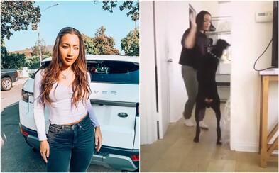 Youtuberka na videu mlátila a plivala na svého dobrmana. Internet se rozhodl psa pomstít