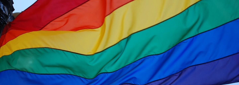 Z detí vychovaných v lesbických rodinách vyrastajú rovnakí dospeláci ako z potomkov heterosexuálov