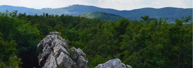 Z novej rozhľadne dovidíš až na rakúske Alpy či Moravu. Vyrastie neďaleko Pezinku
