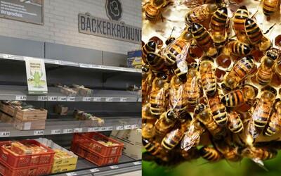 Z obchodu zmizela jablka i čokoláda. Supermarket chtěl poukázat na to, že bez včel by řada produktů nevznikla