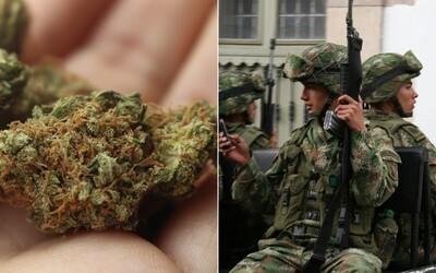 Z policajnej stanice sa vyparilo vyše pol tony marihuany, muži zákona sa vyhovárajú na myši. Podľa expertov je však ich argument absurdný
