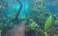 Z tropického pralesu na oceán. Brazílska rezervácia sa vplyvom záplav zmenila na podvodný svet