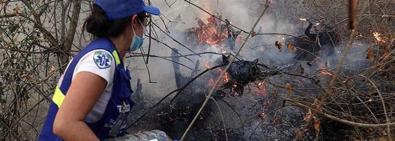Za požáry v Amazonii stojí i módní průmysl