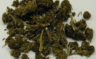Zábudlivý Slovák nechal tašku plnú marihuany v jednom z rakúskych vlakov. O pomoc požiadal tamojšie železnice