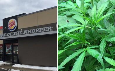 """Zákazníkům prodávali marihuanu díky frázi """"extra křupavé hranolky"""". Pracovníky Burger Kingu a jejich vychytaný systém odhalili policisté"""