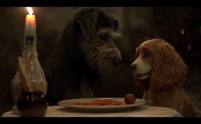 Zaľúbenci Lady a Tramp sa ukázali v prvom traileri. V hranom filme nebude chýbať ani ikonická špagetová scéna