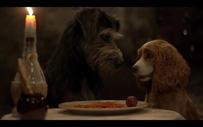 Zamilovaní psi Lady a Tramp se ukázali v prvním traileru. V hraném filmu nebude chybět ani ikonická špagetová scéna