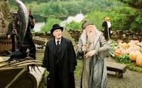 Zemřel Ministr magie Kornelius Popletal z Harryho Pottera. Herec Robert Hardy nás navždy opustil ve věku 91 let