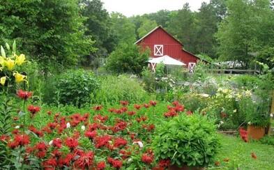 Žena ti daruje svoju organickú farmu v hodnote 450-tisíc dolárov, ak napíšeš najlepšiu 200-slovnú esej. Najradšej by ju nechala v rukách dvojice