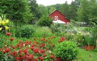Žena ti daruje svou organickou farmu v hodnotě 11 milionů korun, když napíšeš esej o 200 slovech. Nejradši by ji nechala páru