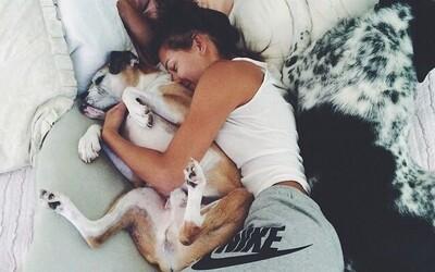 Ženám se spí lépe se psy než s muži, zjistili výzkumníci ve studii