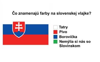 Zo Slovákov si naši susedia robia poriadnu srandu. Najviac sa smejú na vlajke, jazyku či podobnosti so Slovinskom