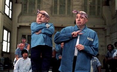 Zomrel Verne Troyer, Mini-Me z komédií Austin Powers a škriatok Griphook z Harryho Pottera