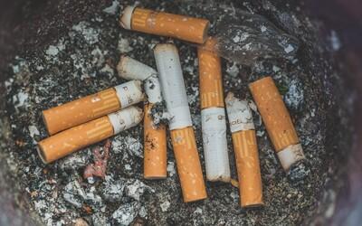Způsobí více úmrtí než vraždy, autohavárie a drogy dohromady. Proč lidé utrácejí za cigarety, které je zabíjejí?
