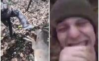 Zraneného jeleňa kopali, až kým nezomrel. Vyše 500-tisíc ľudí žiada stíhanie páchateľov