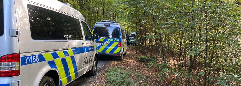 Ztracenou osmiletou holčičku našel na Domažlicku hajný. Byla prochladlá a dezorientovaná
