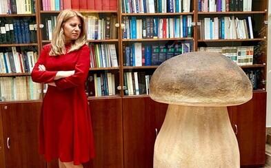 Zuzana Čaputová, Sajfa ani Zomri nebudú držať hubu. Čo sa skrýva za fotkami influencerov, ktoré pribúdajú na sociálnych sieťach?