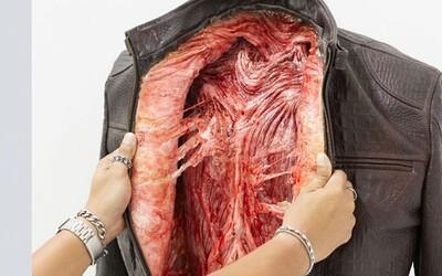 Zvířata stahovaná z kůže i zaživa. Kontroverzní kampaň PETA nakupujícím ukázala skutečnou pravdu