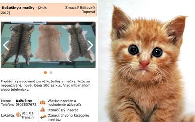 Zvrátený Slovák na Bazoši predáva časti z mačky. Kožušín sa snažil zbaviť za desať eur