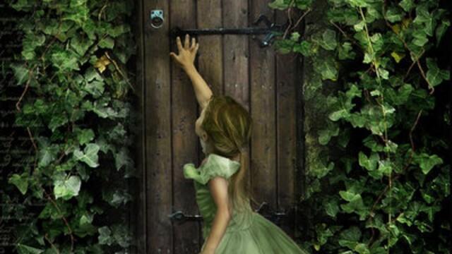 Dvere Ilúzií
