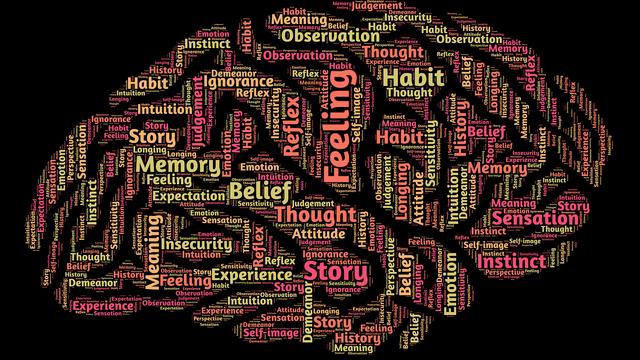 Jak zlepšit paměť , soustředění a výkon?