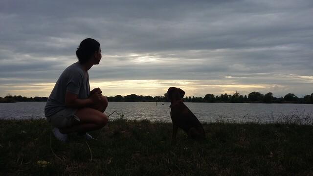 Keď si namiesto psa adoptujete dámu...