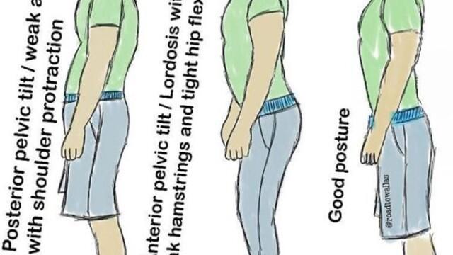 Jak zlepšit držení těla a předpoklady pro správný trénink